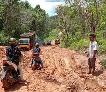 Angkutan sawit yang melintas di ruas jalan Pinoh-Ella